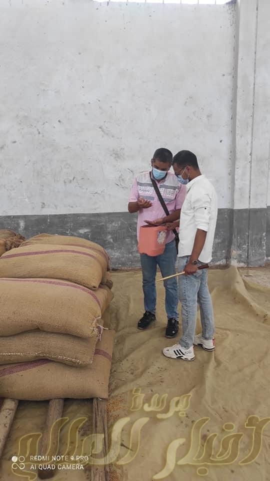 متابعة مستمرة من هيئة سلامة الغذاء للجان أستلام القمح المحلي بقن