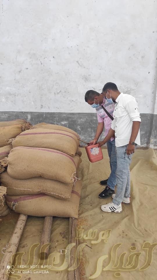 متابعة مستمرة من هيئة سلامة الغذاء للجان أستلام القمح المحلي بقنا